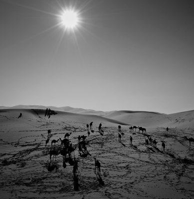 الصحراء 3